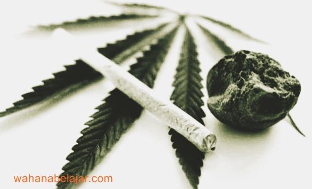 Memahami Pengertian Narkoba dan Psikotrapika