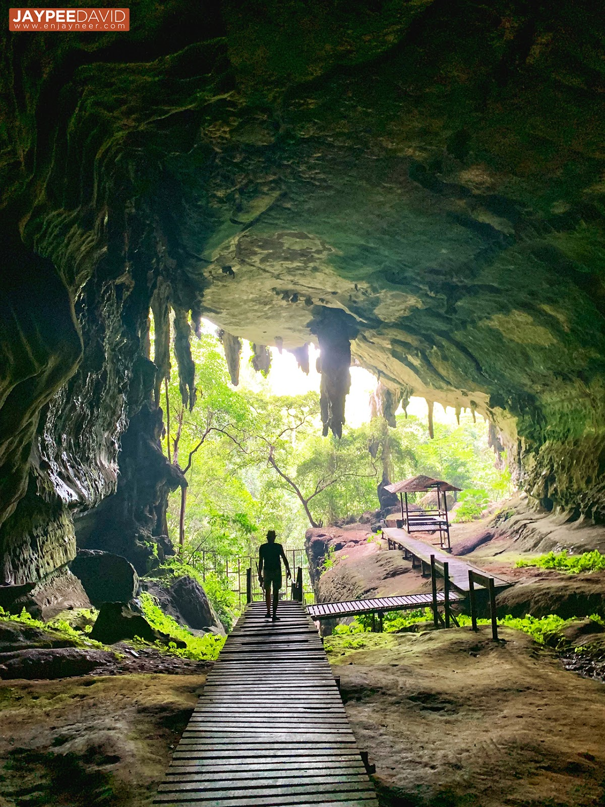 miri, malaysia, itinerary, tour package, travel, sarawak, brunei border, land travel, passport, marina bay, coco cabana, villa dapap, budget, niah cave spelunking