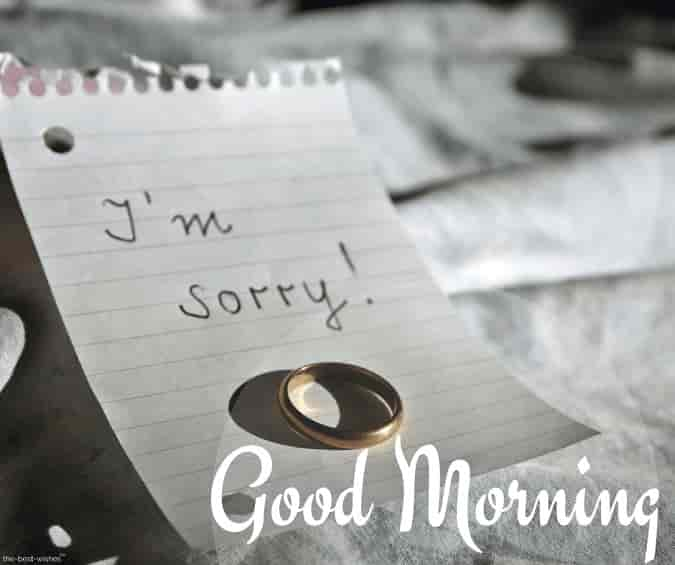 i m sorry good morning image