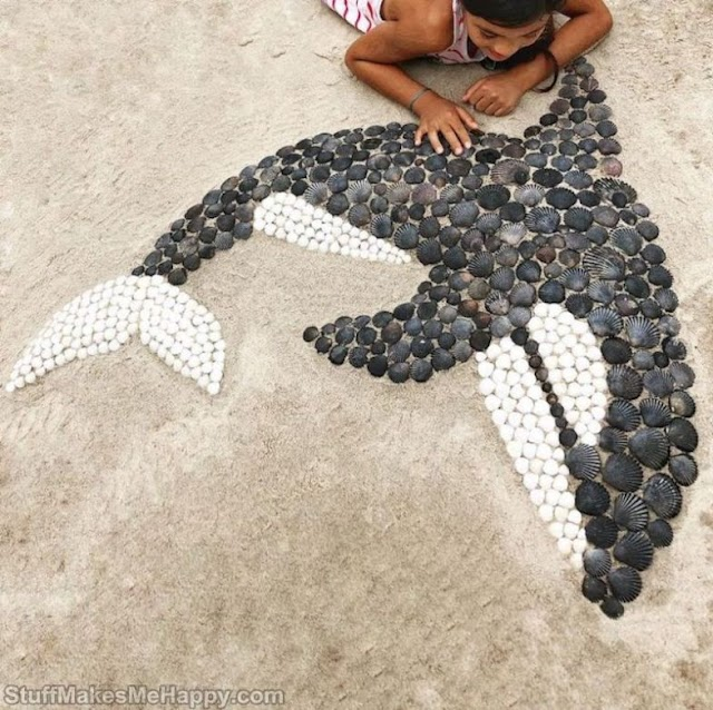 She Assembles Seashells To Create Animals With Fascinating Details