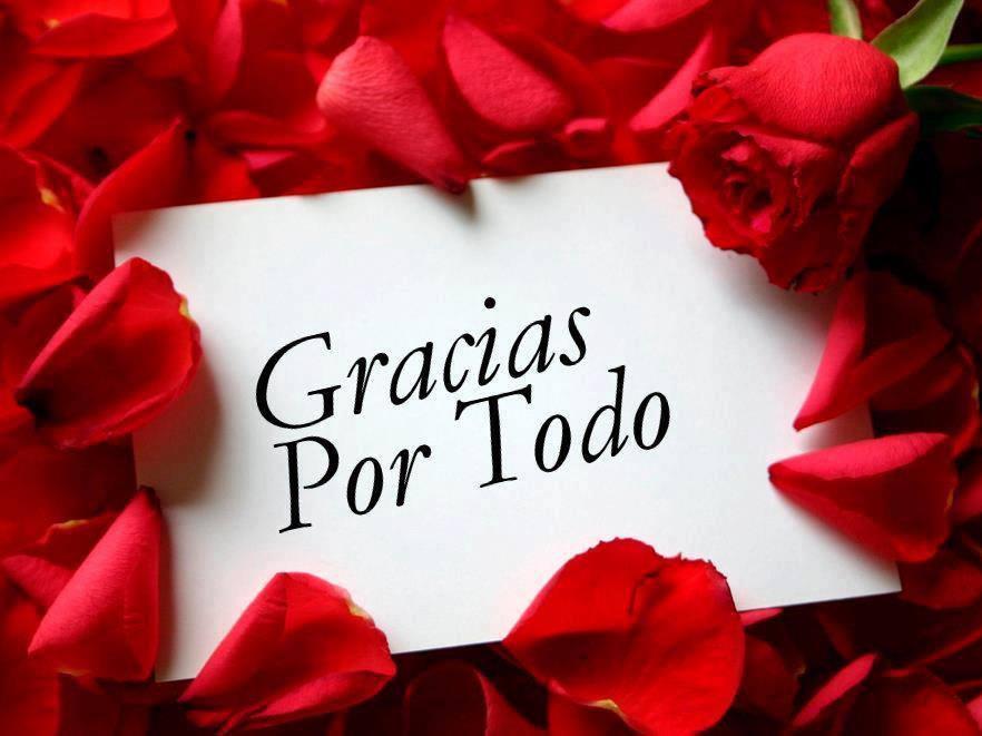 Gracias por Todo | Mensaje con una Rosa - Imagenes y Carteles
