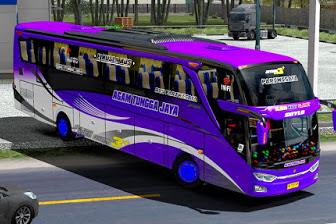 Skin Bus Skin ATJ Pack for Jetbus 3 OjePeJe
