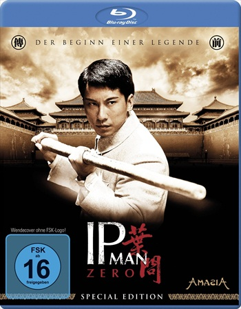 Free Download The Legend Is Born Ip Man 2010 Dual Audio Hindi  BluRay 300mb