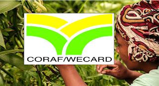 Afrique, Sénégal, Dakar, WEBGRAM, ingénierie logicielle, programmation, développement web, application, informatique : CORAF/WECARD (Conseil Ouest et Centre africain pour la recherche et le développement agricoles)