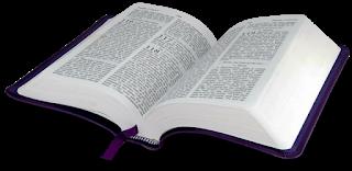Libro de Joel, Leer el libro de Joel, Capitulos de Joel