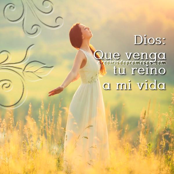 establecer el reino de los cielos reflexiones cristianas con imágenes