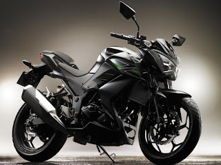 Kawasaki Z250 Design And Style