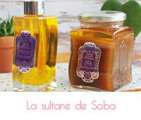 VOYAGE SUR LA ROUTE D'UDAÏPUR Sultane de Saba