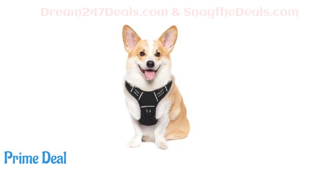 50%off Dog Harness