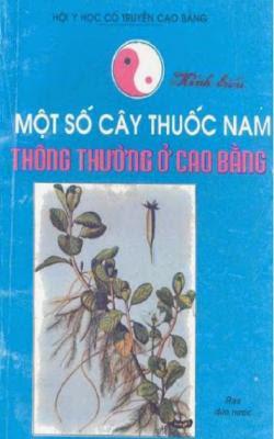 Một số cây thuốc Nam thông thường ở Cao Bằng - Nhiều Tác Giả