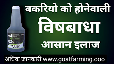 Goat Poisoning Treatment in Hindi