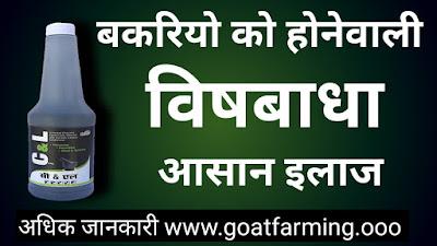 Goat Poisoning Treatment in Hindi