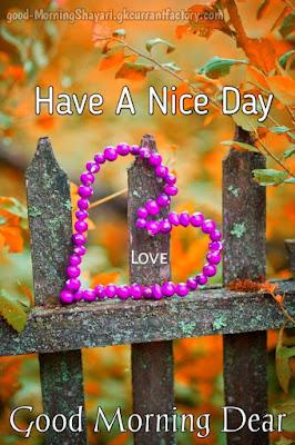 Good Morning Love Images, Good Morning Love Images HD Download, Good Morning Love Photo