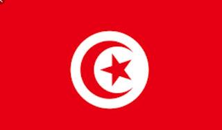 Sejarah : Pemerintah Presiden Bin Ali Tumbang di Tunisia Pasca Demontrasi besar? Ini Faktanya!