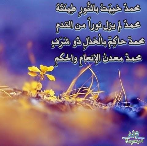 محمدٌ خبِيَتْ بالنُّورِ طِينَتُهُ