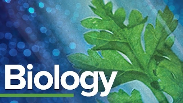 12th Biology Public Exam Original Question Paper September 2020
