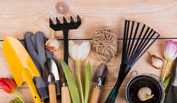 Simple and Unique DIY Tips and Tricks of Gardening-Tools