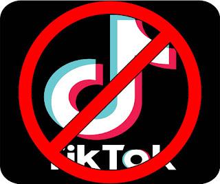 Why-Tik-Tok-banned-in-India, Tik-Tok-Ban-in-India