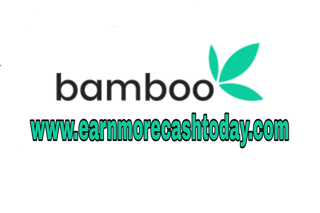 Bamboo investment review
