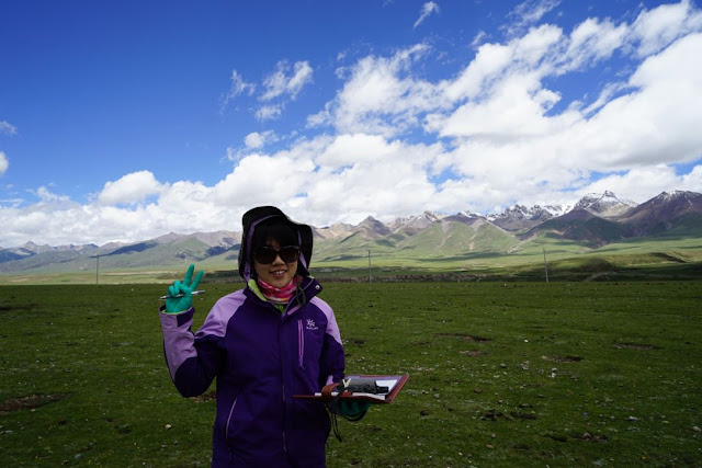Yuzhi undertaking fieldwork in the alpine region of the Tibetian Plateau.