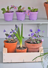 spring potting shed