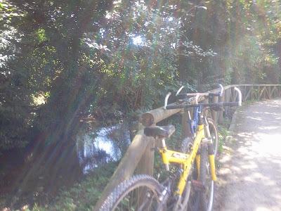 bicicletas-gijón