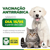 Vacinação Antirrábica neste sábado dia 15 em São José de Ubá
