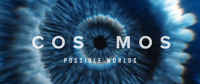 COSMOS POSSIBLE WORLDS sub indo
