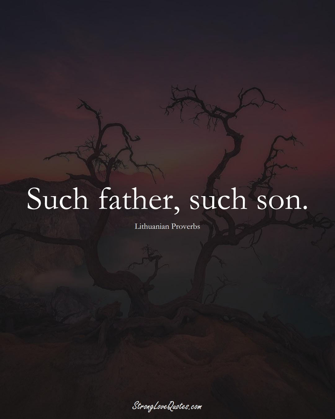 Such father, such son. (Lithuanian Sayings);  #AsianSayings