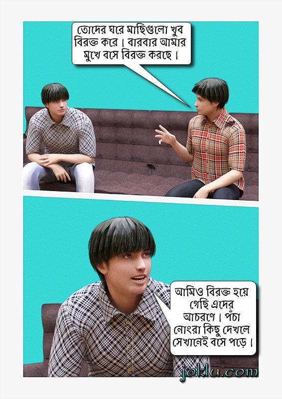 Annoying housefly Bengali joke