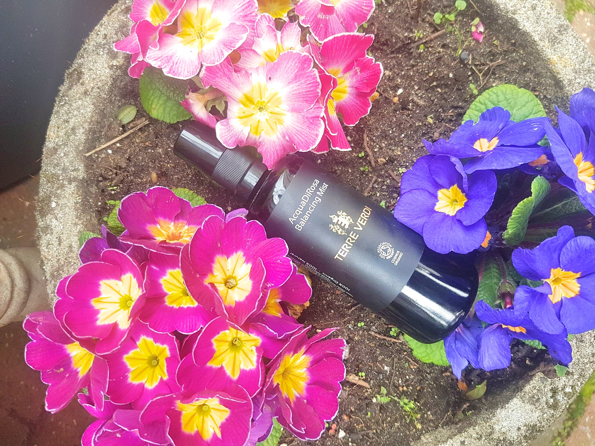 Terre Verdi AcquaDiRosa Balancing Mist in a mix of purple and pink primrose flowers