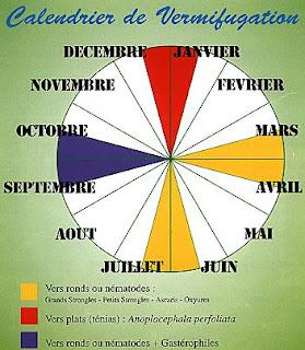 Dates de vermifuges pour chaque saison et désignation des vers présents.