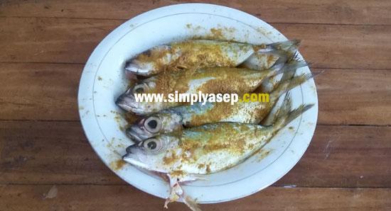 Ikan yang sudah dibumbui ini sebelumnya dimasukkan ke dalam kulkas agar bisa bertahan lama. Foto Asep Haryono