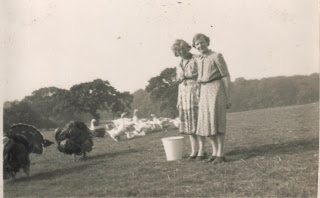 Farming in England in the 30s and 40s