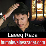 https://humaliwalaazadar.blogspot.com/2019/08/laeeq-raza-nohay-2020.html