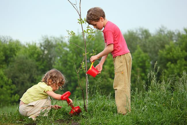 educacion ambiental niños