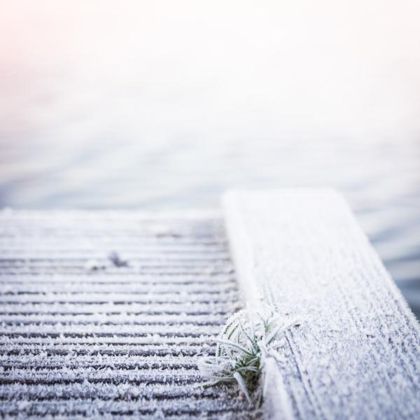 Der erste Frost by titatoni
