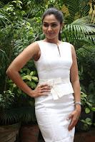 Andrea Jeremiah Stills in White Dress at Taramani Success Meet .COM 0005.jpg