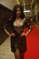 Pooja Hegde looks glamarous in deep neck sleevless short tight golden gown at Duvvada Jagannadham thank you meet function 016.JPG