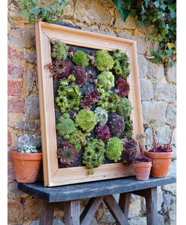 Tutorial for building a hanging wall frame for a succulent garden