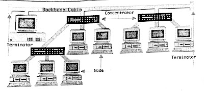 What is network topology and Explain its types?