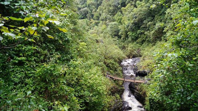 rio, valle, selva, gocta, catarata, cascada,
