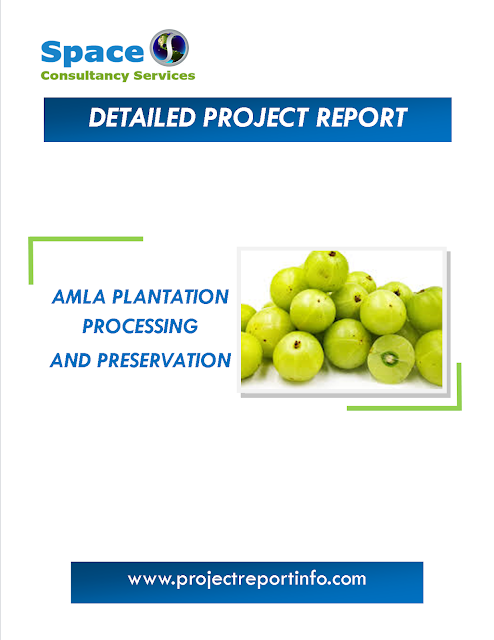 Project Report on Amla plantation, processing and preservation