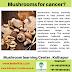 Mushroom for  Cancer?