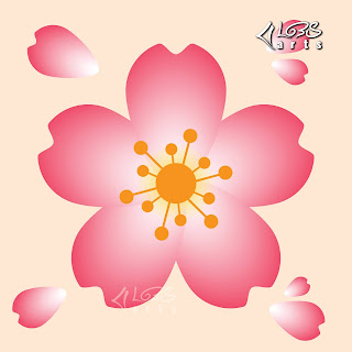 Beautiful Pinky Cherry Blossom
