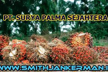 Lowongan PT. Surya Palma Sejahtera Pekanbaru Maret 2018