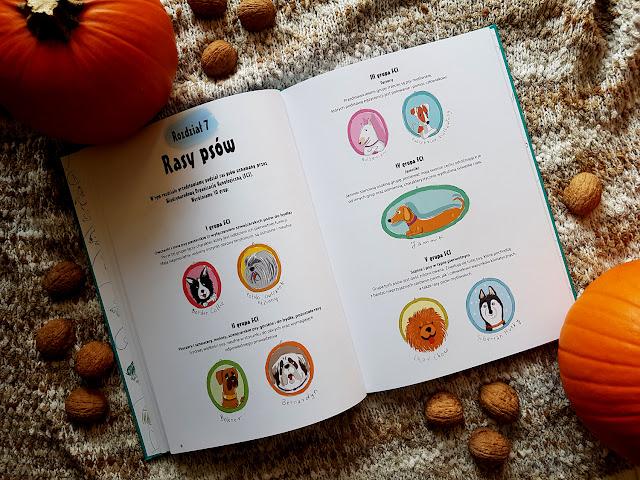Wszystko o krowach - Wszystko o psach - Wydawnictwo Dragon - Dragon dla dzieci - książki dla dzieci - książeczki dla dzieci - blog rodzicielski - blog parentingowy