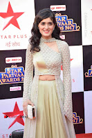 Star Parivaar Awards 2017 Red Carpet Stills .COM 0058.jpg