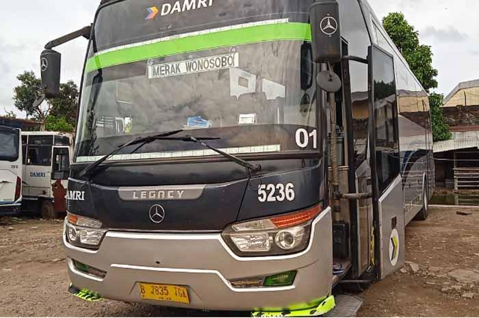 Jadwal Bus Damri Serang ke Berbagai Wilayah Tujuan
