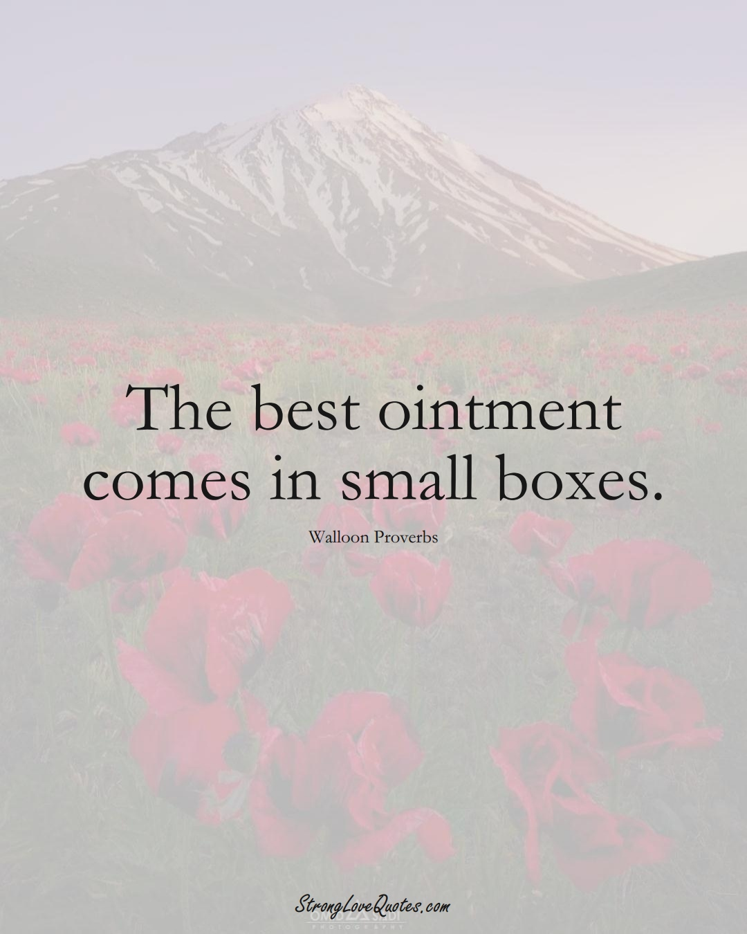 The best ointment comes in small boxes. (Walloon Sayings);  #aVarietyofCulturesSayings